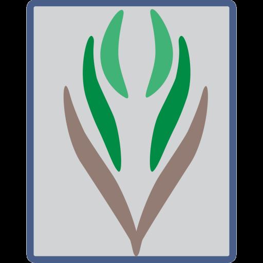 لجنة التنمية الاجتماعية الأهلية لأحياء الكورنيش